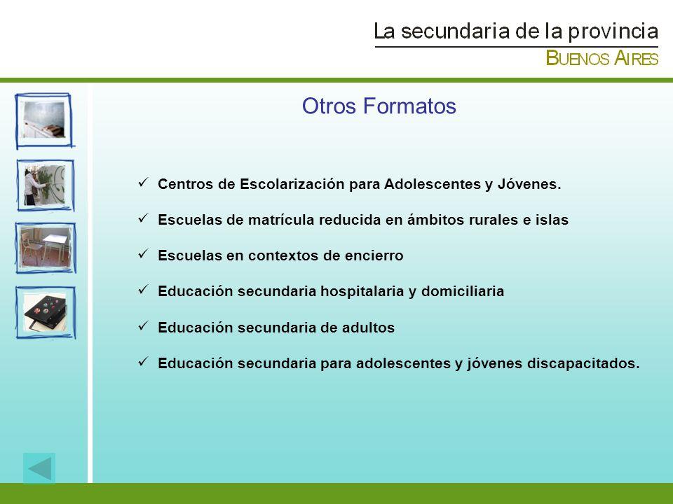 Otros Formatos Centros de Escolarización para Adolescentes y Jóvenes.
