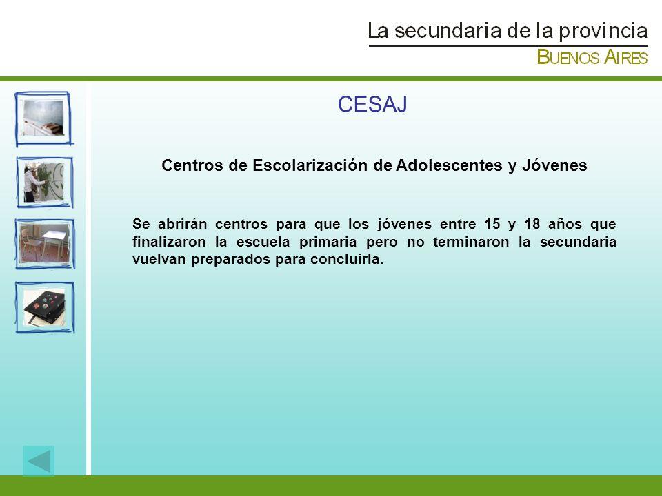 Centros de Escolarización de Adolescentes y Jóvenes