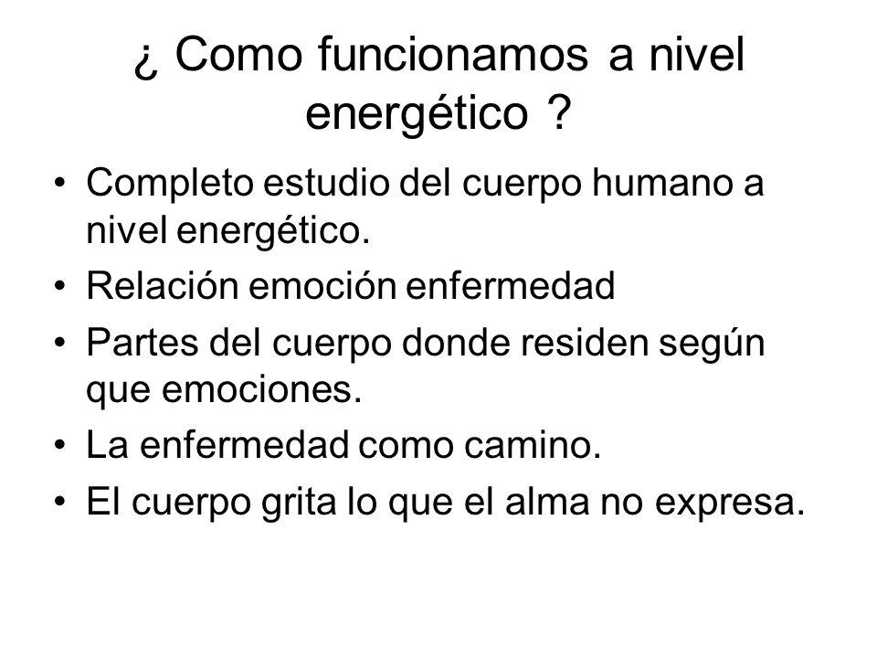 ¿ Como funcionamos a nivel energético