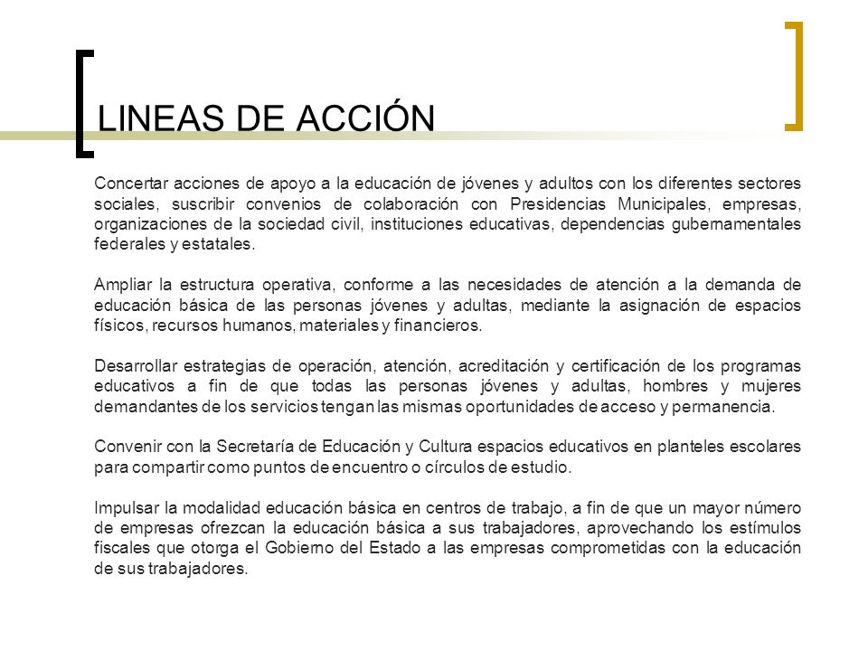 LINEAS DE ACCIÓN