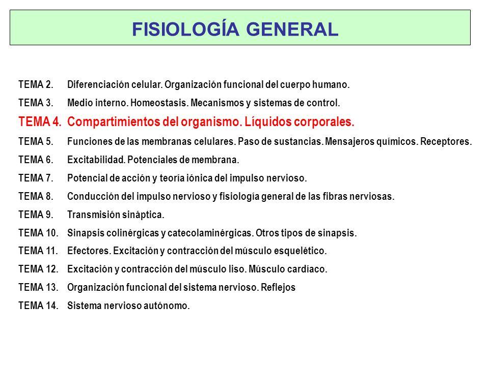 FISIOLOGÍA GENERALTEMA 2. Diferenciación celular. Organización funcional del cuerpo humano.