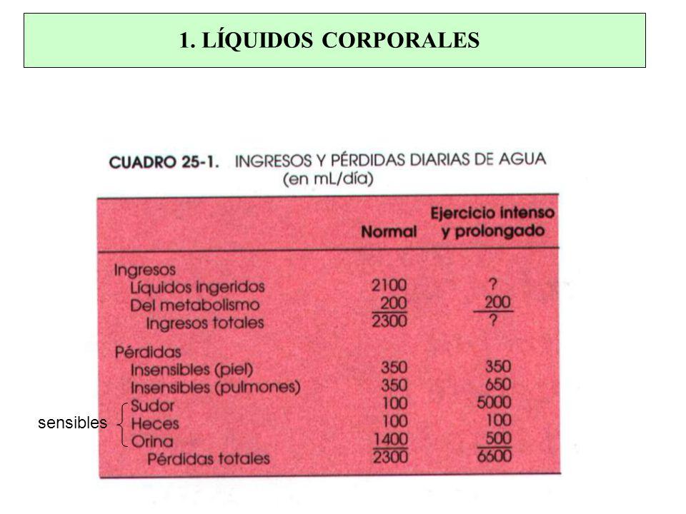 1. LÍQUIDOS CORPORALES sensibles