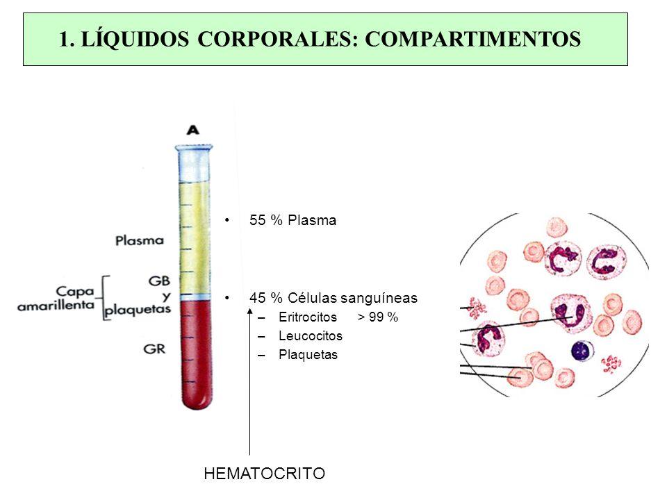 1. LÍQUIDOS CORPORALES: COMPARTIMENTOS