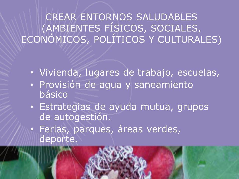 CREAR ENTORNOS SALUDABLES (AMBIENTES FÍSICOS, SOCIALES, ECONÓMICOS, POLÍTICOS Y CULTURALES)