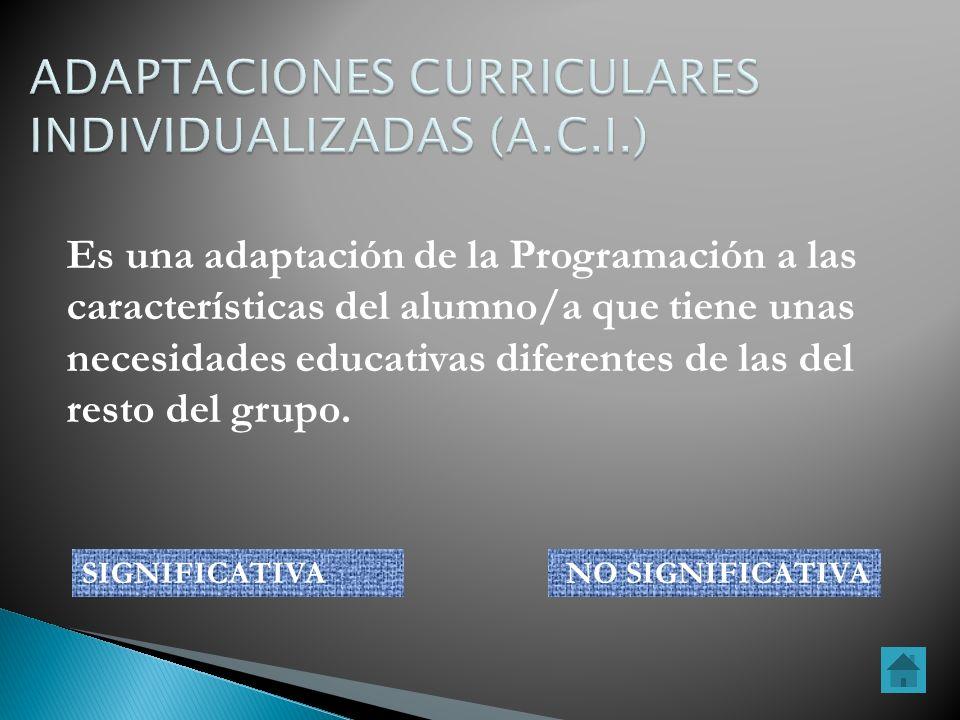 ADAPTACIONES CURRICULARES INDIVIDUALIZADAS (A.C.I.)