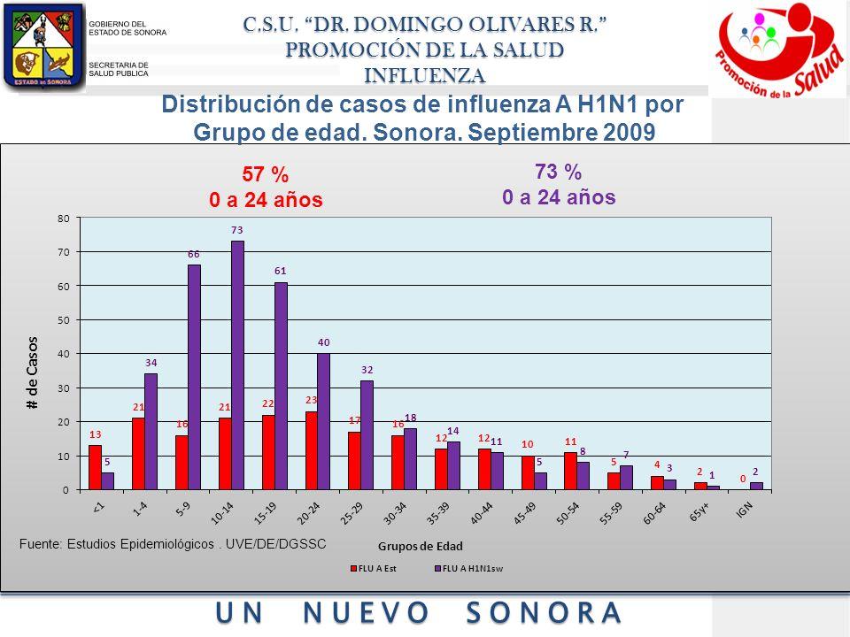 Distribución de casos de influenza A H1N1 por