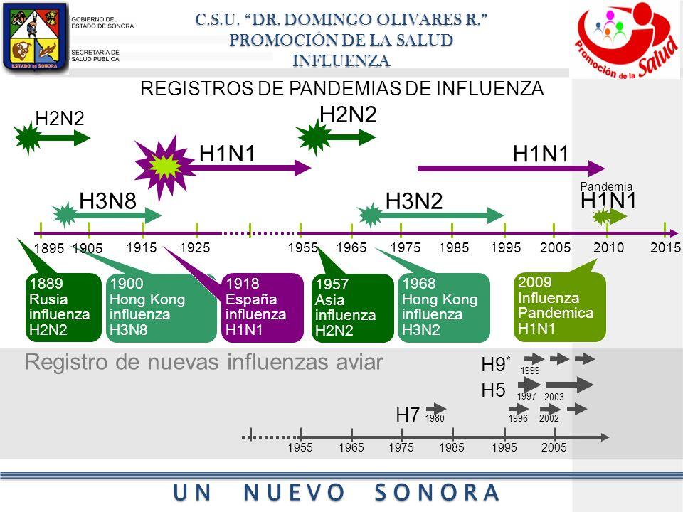 REGISTROS DE PANDEMIAS DE INFLUENZA
