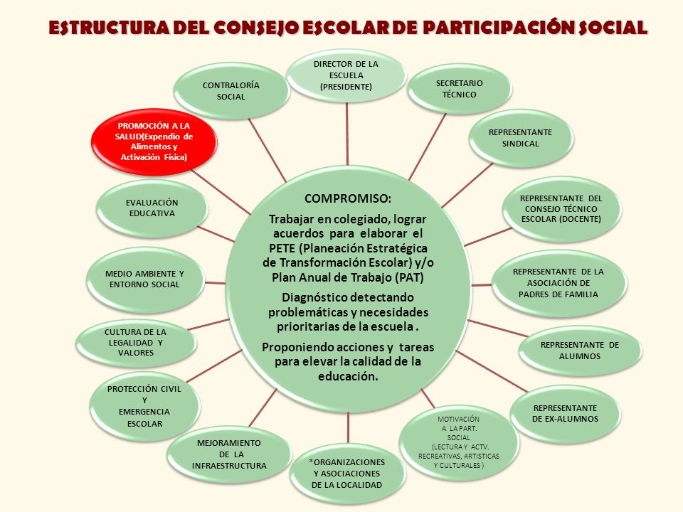 ESTRUCTURA DEL CONSEJO ESCOLAR DE PARTICIPACIÓN SOCIAL