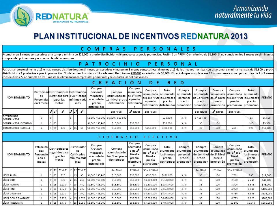 PLAN INSTITUCIONAL DE INCENTIVOS REDNATURA 2013