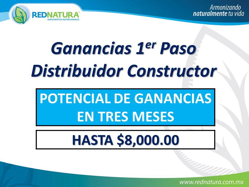 Ganancias 1er Paso Distribuidor Constructor