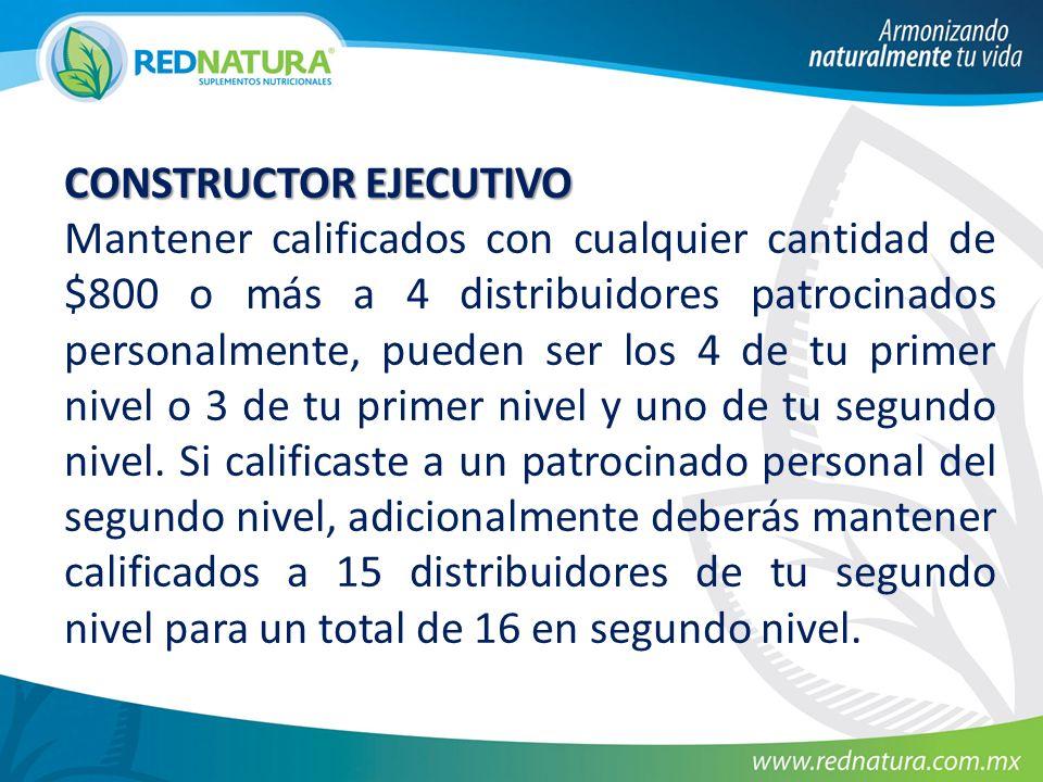 CONSTRUCTOR EJECUTIVO