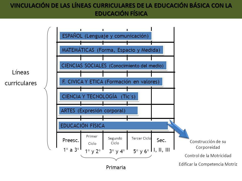 VINCULACIÓN DE LAS LÍNEAS CURRICULARES DE LA EDUCACIÓN BÁSICA CON LA EDUCACIÓN FÍSICA