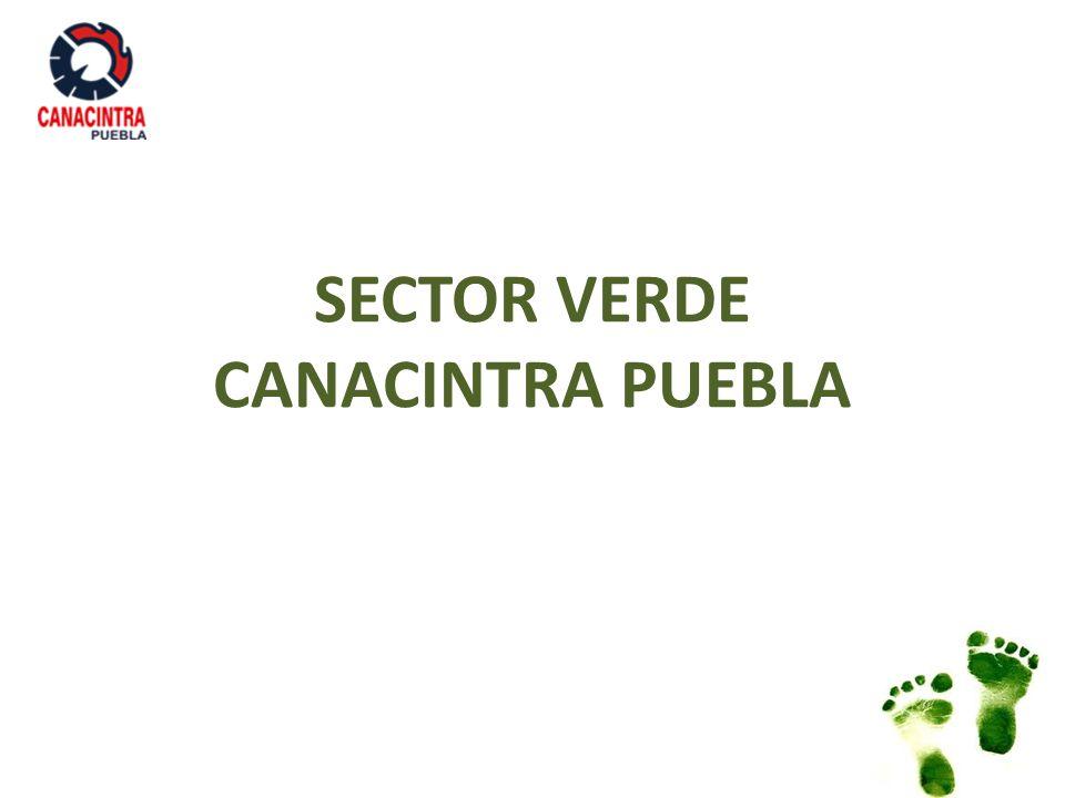 SECTOR VERDE CANACINTRA PUEBLA