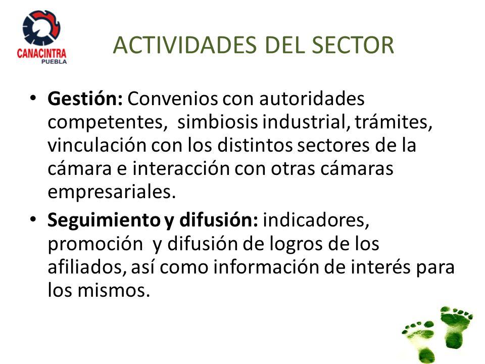 ACTIVIDADES DEL SECTOR