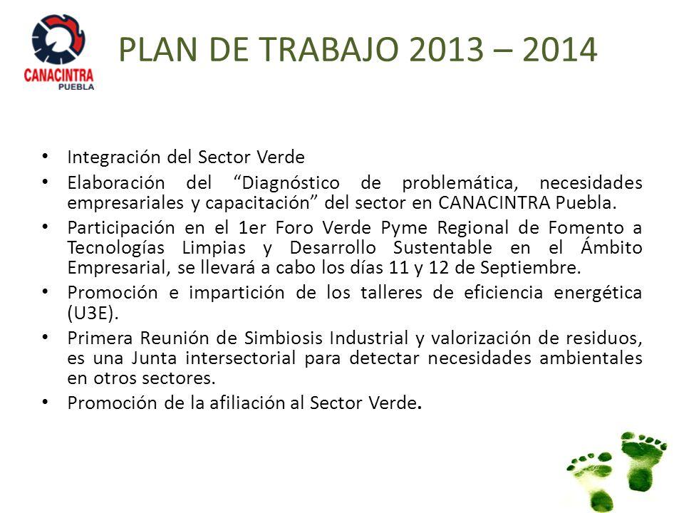 PLAN DE TRABAJO 2013 – 2014 Integración del Sector Verde