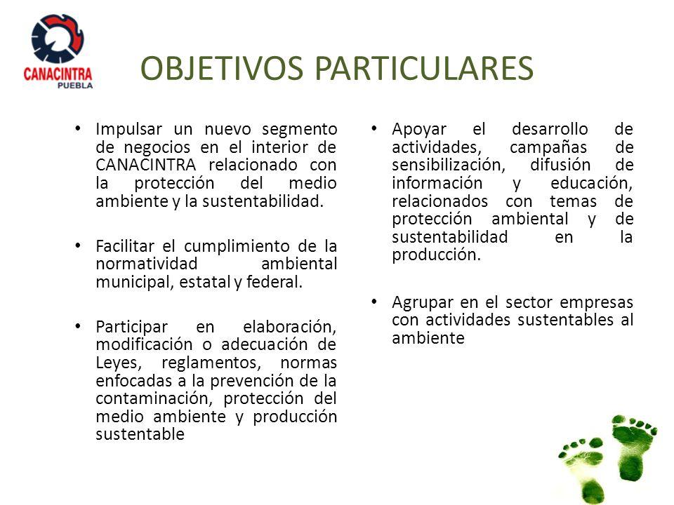 OBJETIVOS PARTICULARES