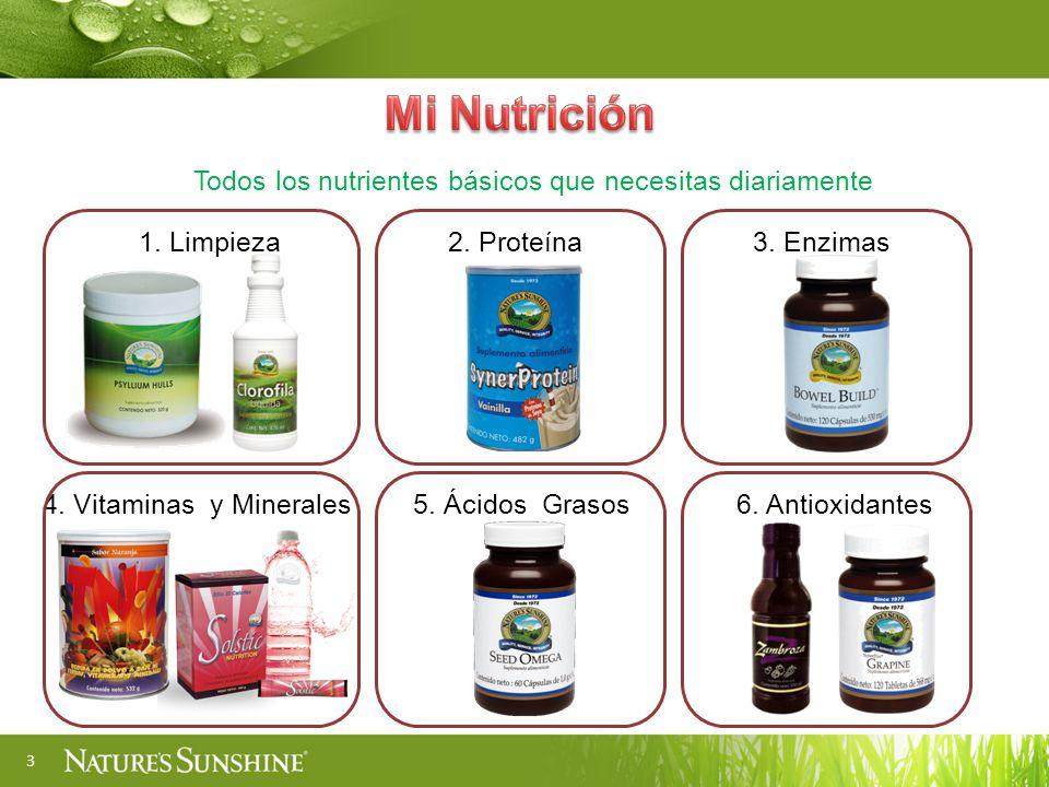 Todos los nutrientes básicos que necesitas diariamente