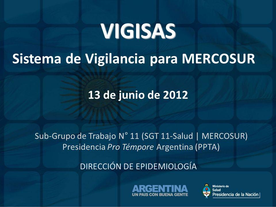 VIGISAS Sistema de Vigilancia para MERCOSUR 13 de junio de 2012