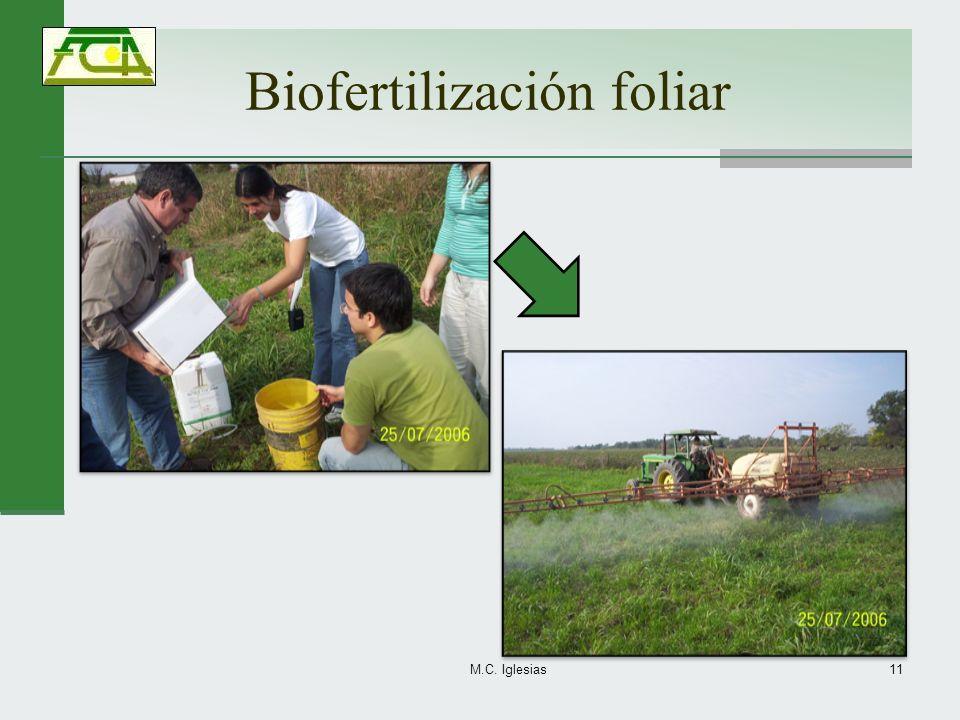 Biofertilización foliar