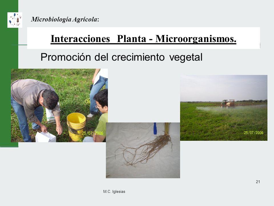 Interacciones Planta - Microorganismos.
