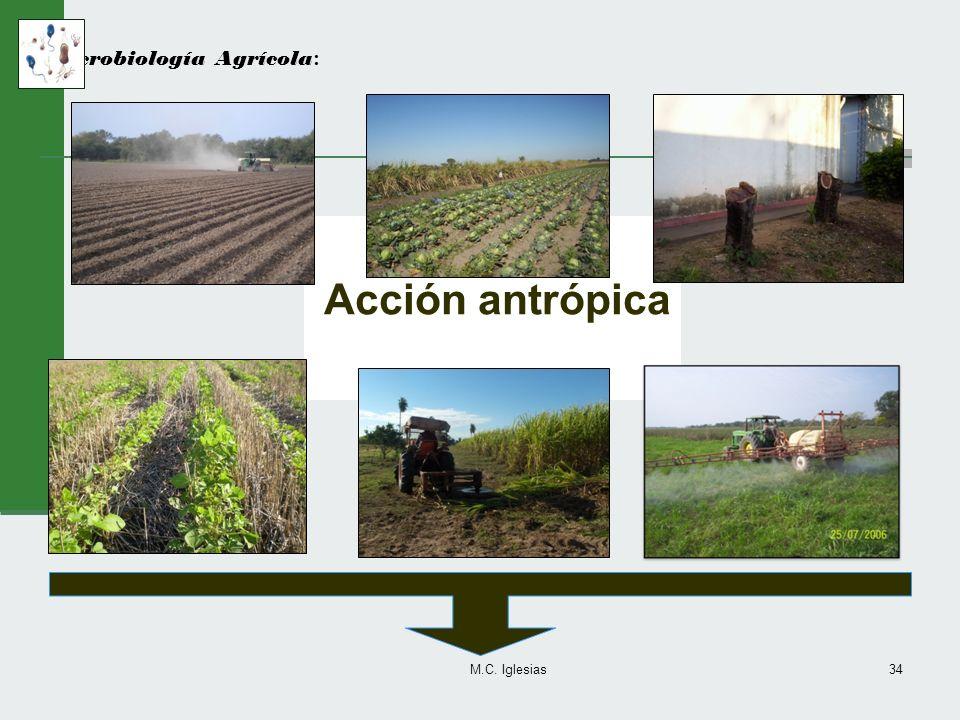 Microbiología Agrícola: