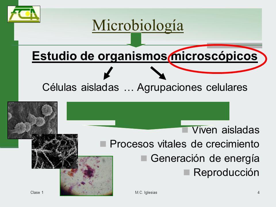 Microbiología Estudio de organismos microscópicos