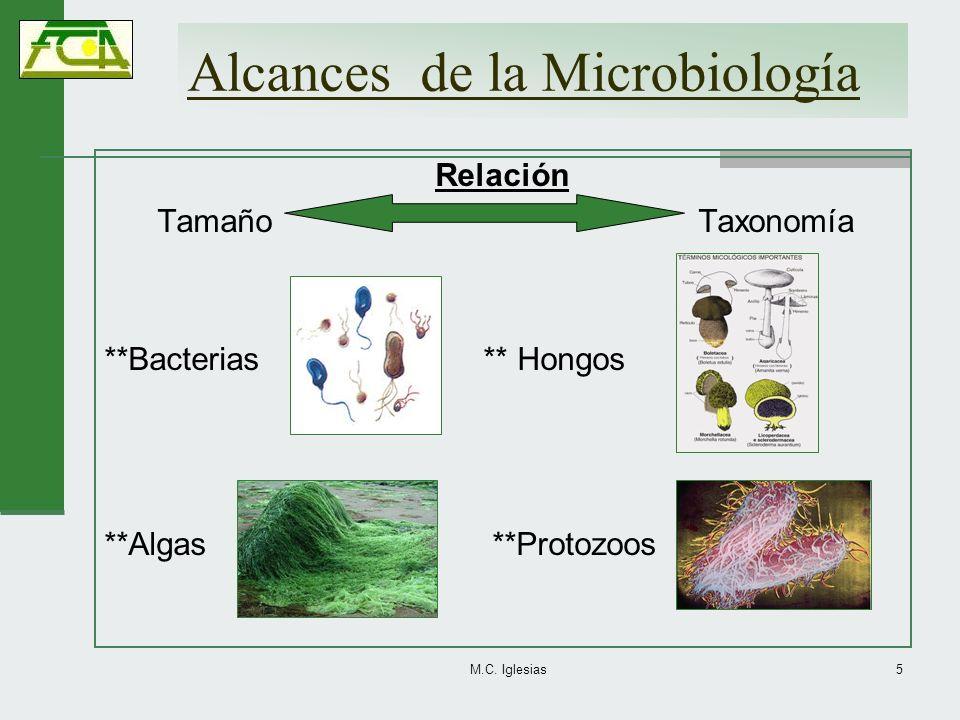 Alcances de la Microbiología