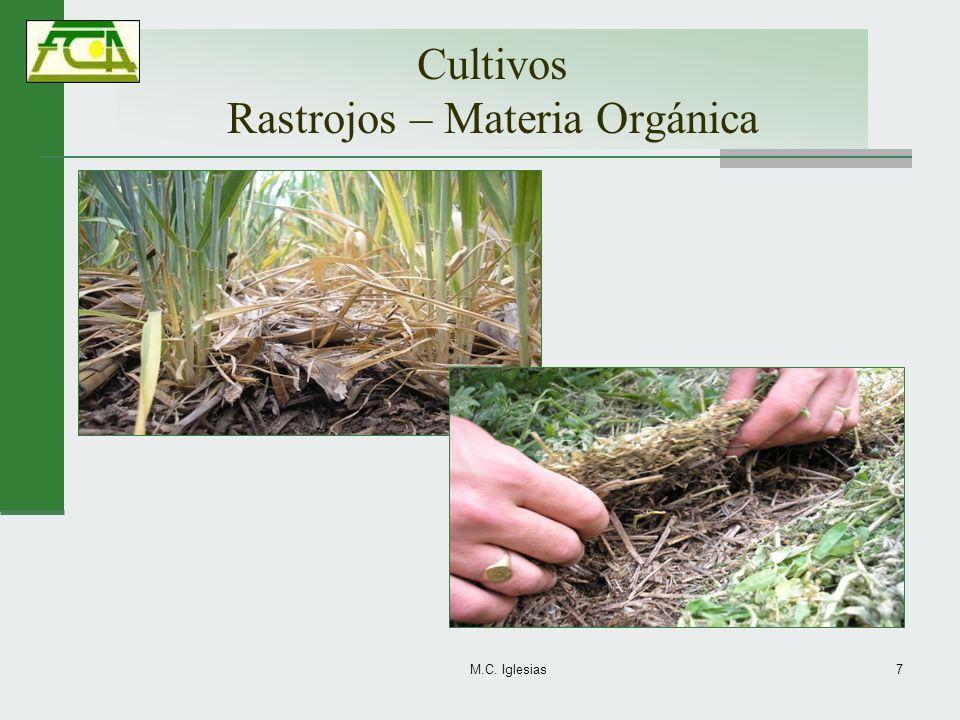 Cultivos Rastrojos – Materia Orgánica
