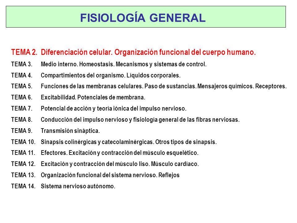 FISIOLOGÍA GENERAL TEMA 2. Diferenciación celular. Organización funcional del cuerpo humano.