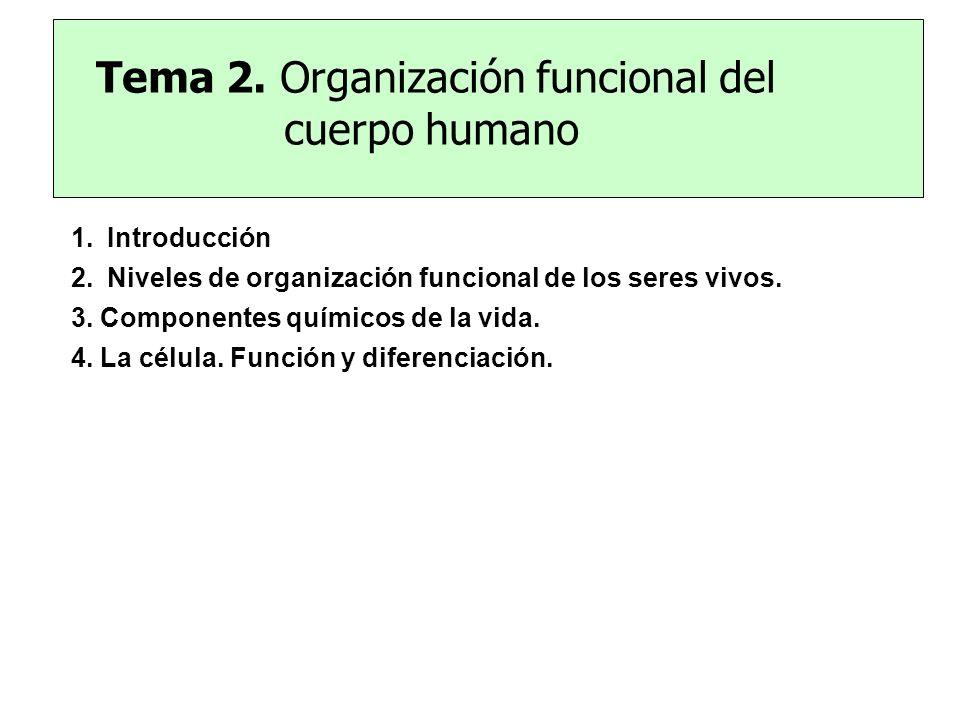 Tema 2. Organización funcional del cuerpo humano