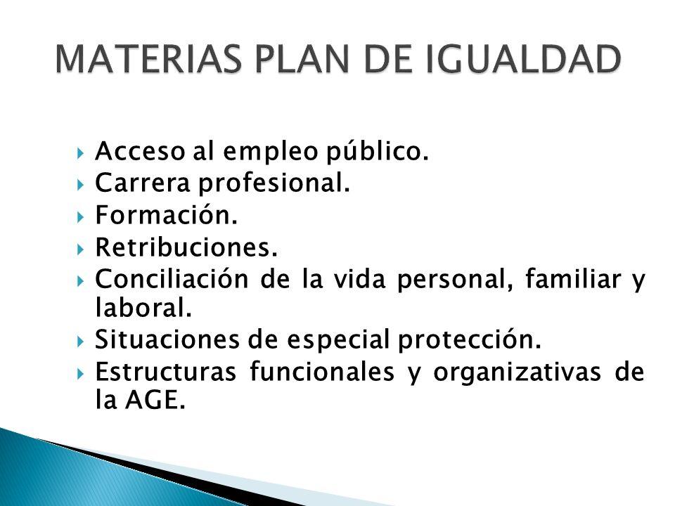 MATERIAS PLAN DE IGUALDAD