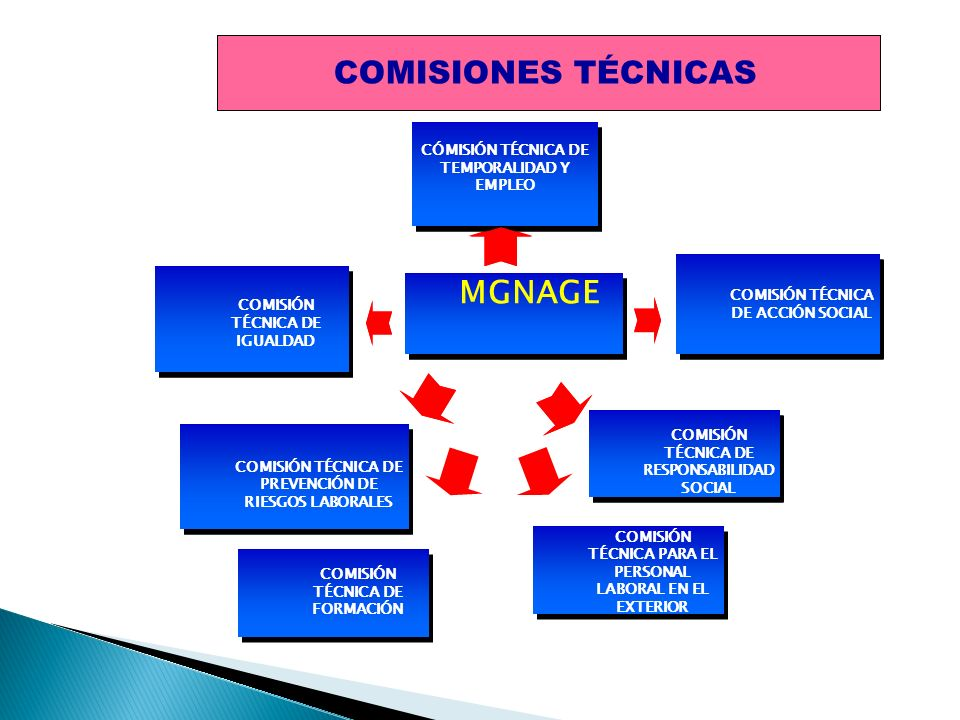 COMISIONES TÉCNICAS COMISIONES TÉCNICAS