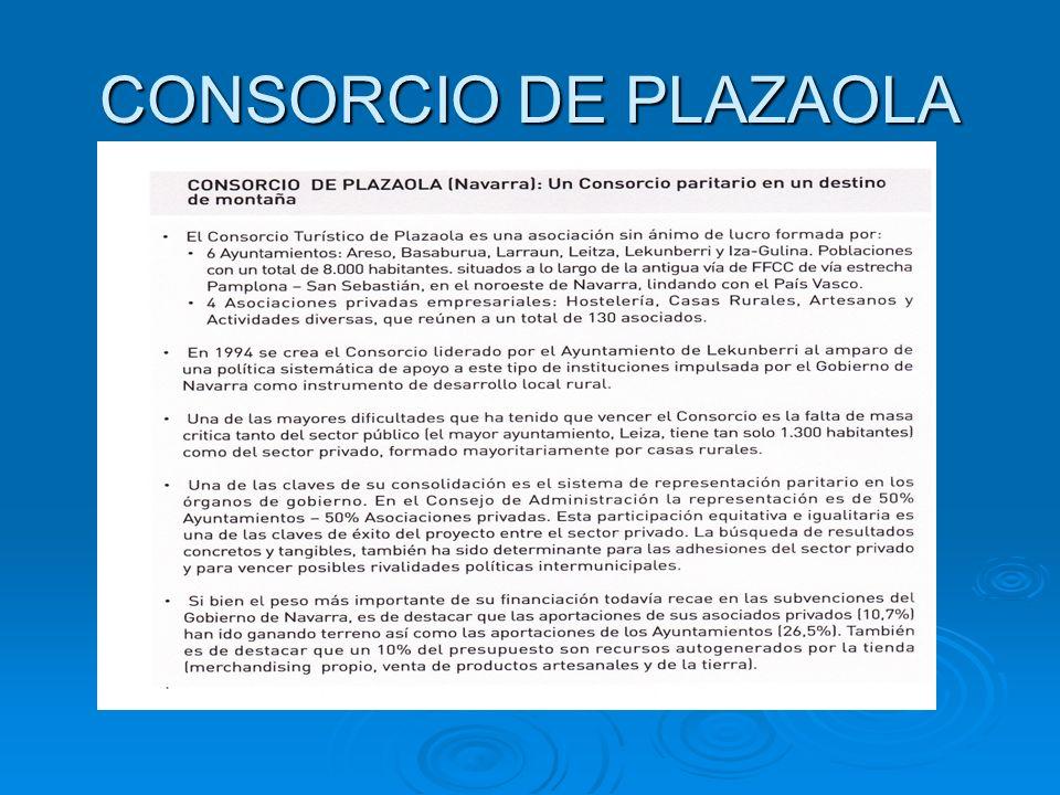 CONSORCIO DE PLAZAOLA