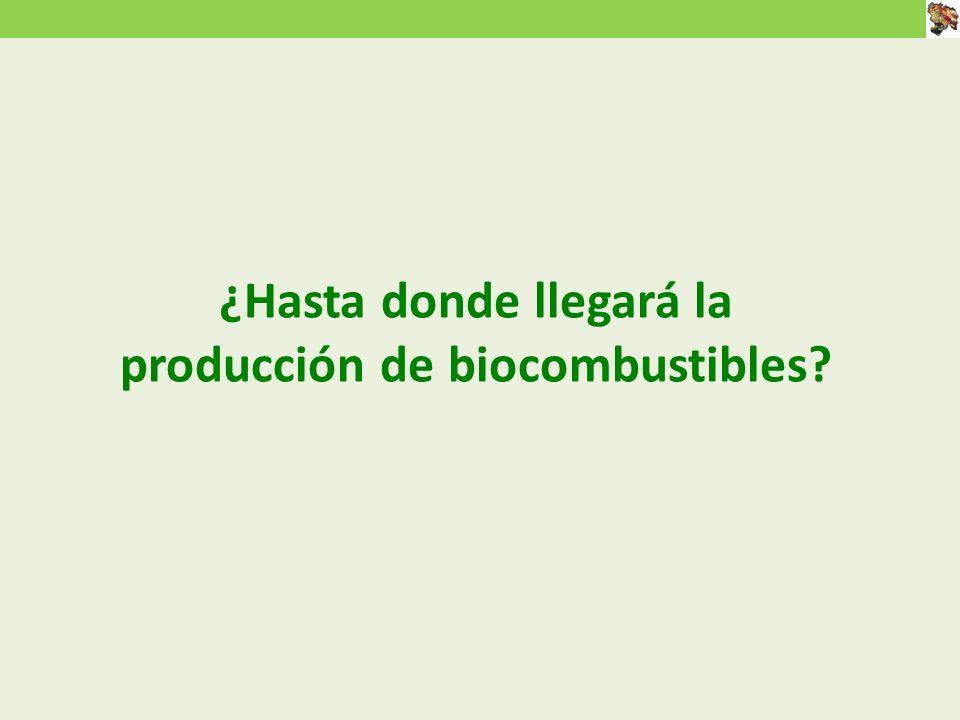 ¿Hasta donde llegará la producción de biocombustibles