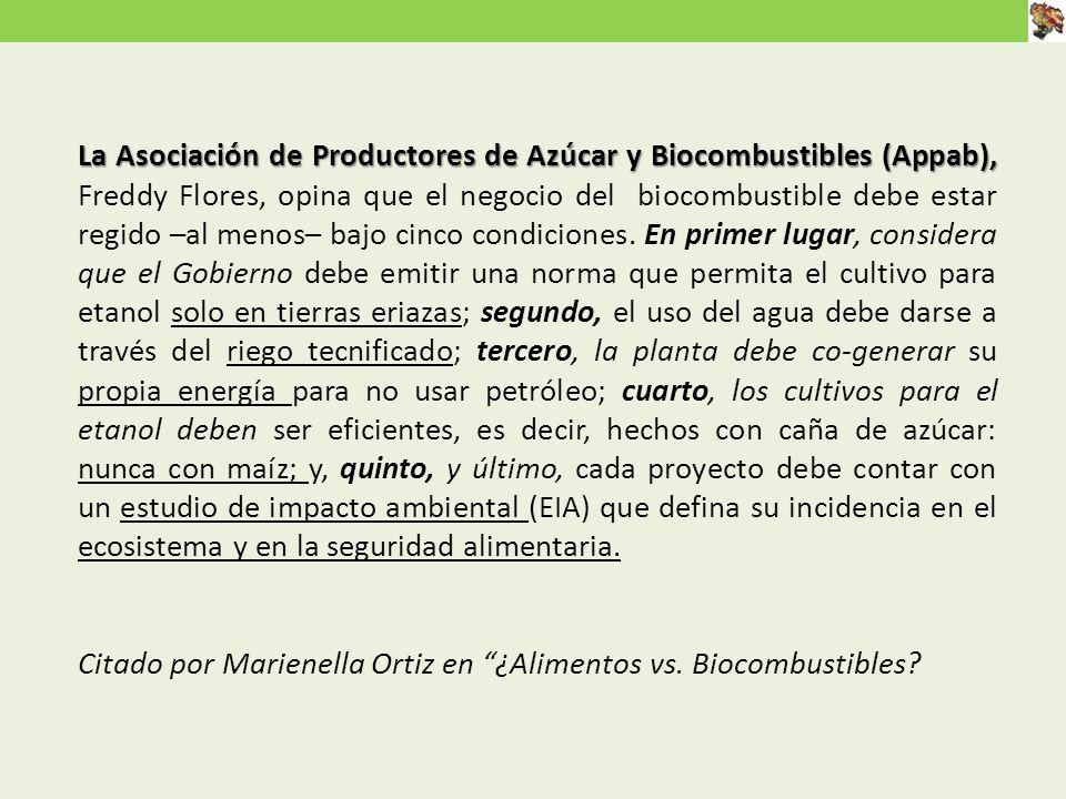 La Asociación de Productores de Azúcar y Biocombustibles (Appab), Freddy Flores, opina que el negocio del biocombustible debe estar regido –al menos– bajo cinco condiciones. En primer lugar, considera que el Gobierno debe emitir una norma que permita el cultivo para etanol solo en tierras eriazas; segundo, el uso del agua debe darse a través del riego tecnificado; tercero, la planta debe co-generar su propia energía para no usar petróleo; cuarto, los cultivos para el etanol deben ser eficientes, es decir, hechos con caña de azúcar: nunca con maíz; y, quinto, y último, cada proyecto debe contar con un estudio de impacto ambiental (EIA) que defina su incidencia en el ecosistema y en la seguridad alimentaria.