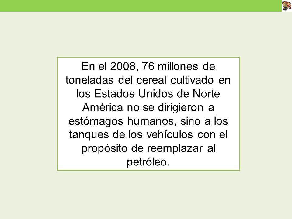 En el 2008, 76 millones de toneladas del cereal cultivado en los Estados Unidos de Norte América no se dirigieron a estómagos humanos, sino a los tanques de los vehículos con el propósito de reemplazar al petróleo.