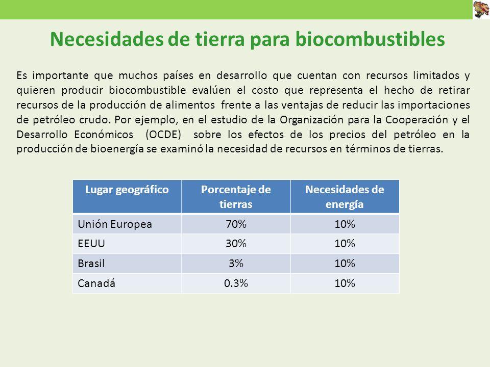 Necesidades de tierra para biocombustibles Necesidades de energía