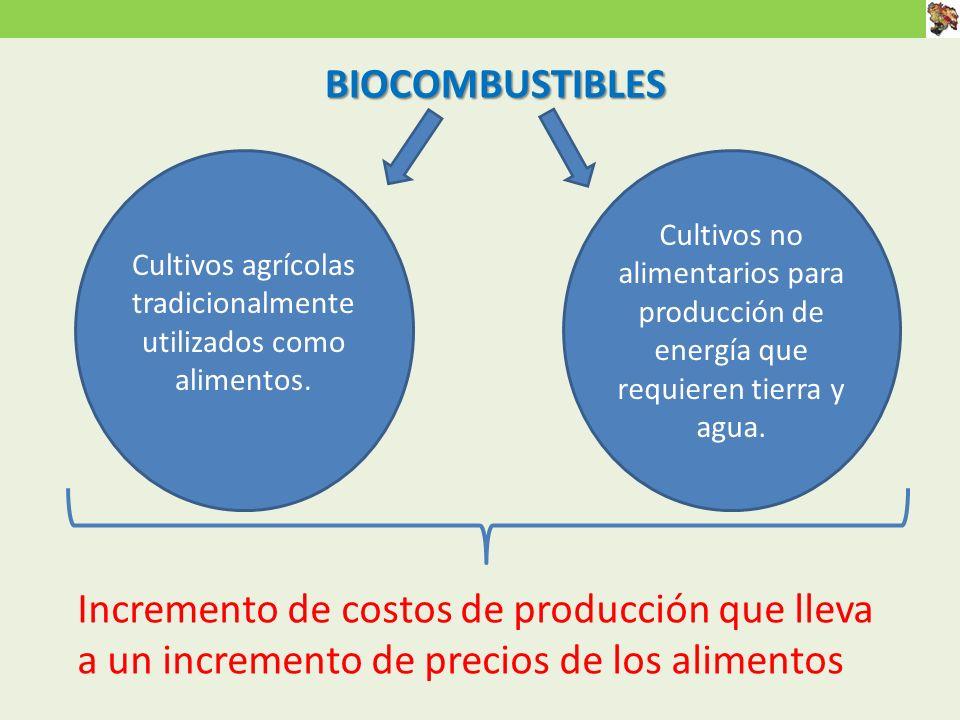 Cultivos agrícolas tradicionalmente utilizados como alimentos.