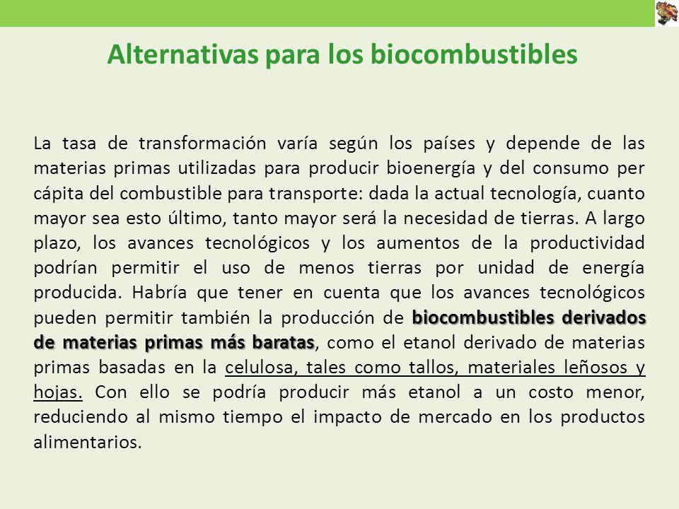 Alternativas para los biocombustibles