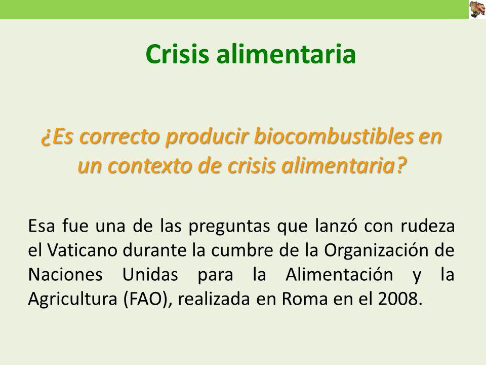 Crisis alimentaria ¿Es correcto producir biocombustibles en un contexto de crisis alimentaria