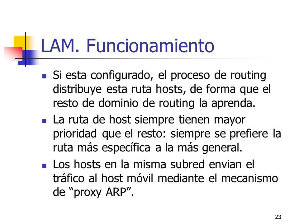 LAM. Funcionamiento Si esta configurado, el proceso de routing distribuye esta ruta hosts, de forma que el resto de dominio de routing la aprenda.