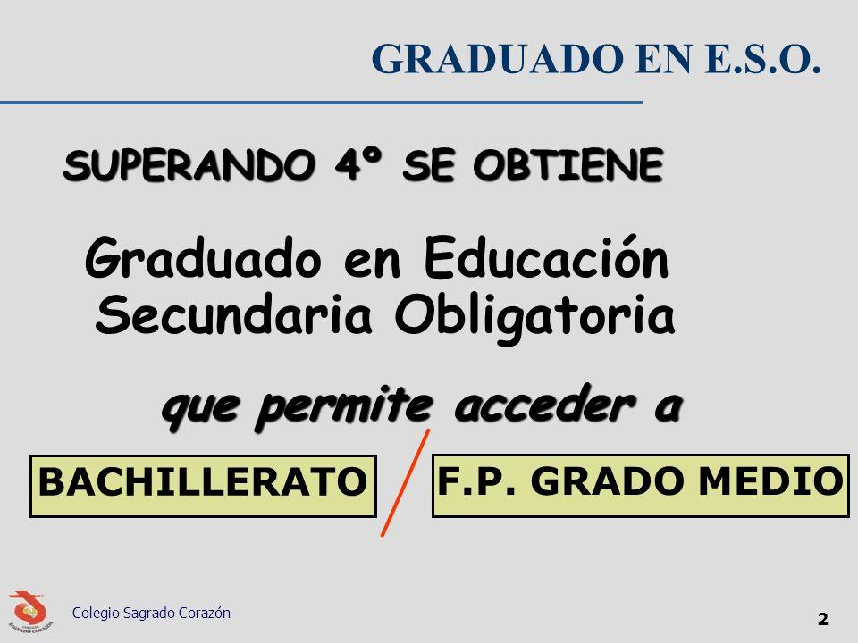 Graduado en Educación Secundaria Obligatoria