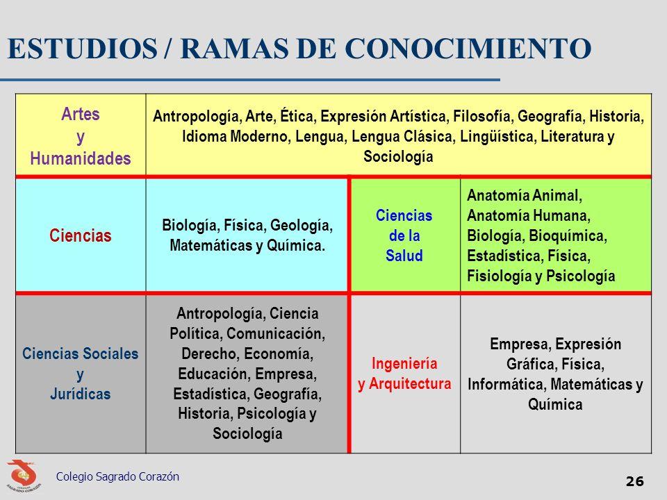 ESTUDIOS / RAMAS DE CONOCIMIENTO