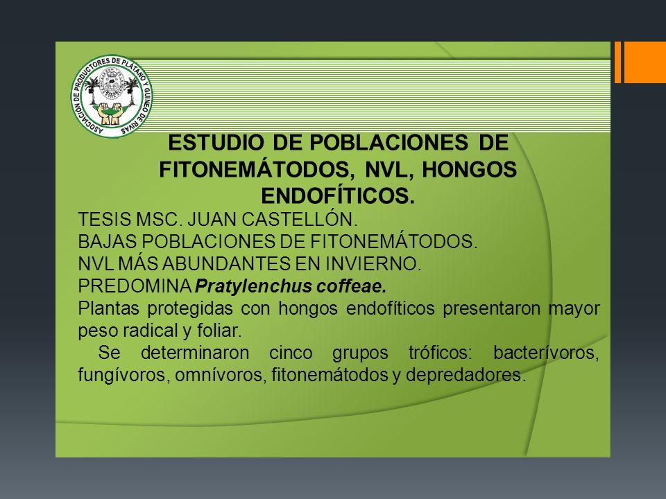 ESTUDIO DE POBLACIONES DE FITONEMÁTODOS, NVL, HONGOS ENDOFÍTICOS.