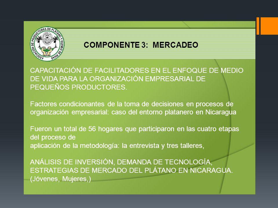 COMPONENTE 3: MERCADEO CAPACITACIÓN DE FACILITADORES EN EL ENFOQUE DE MEDIO DE VIDA PARA LA ORGANIZACIÓN EMPRESARIAL DE PEQUEÑOS PRODUCTORES.