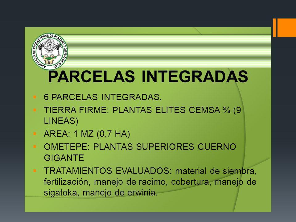 PARCELAS INTEGRADAS 6 PARCELAS INTEGRADAS.
