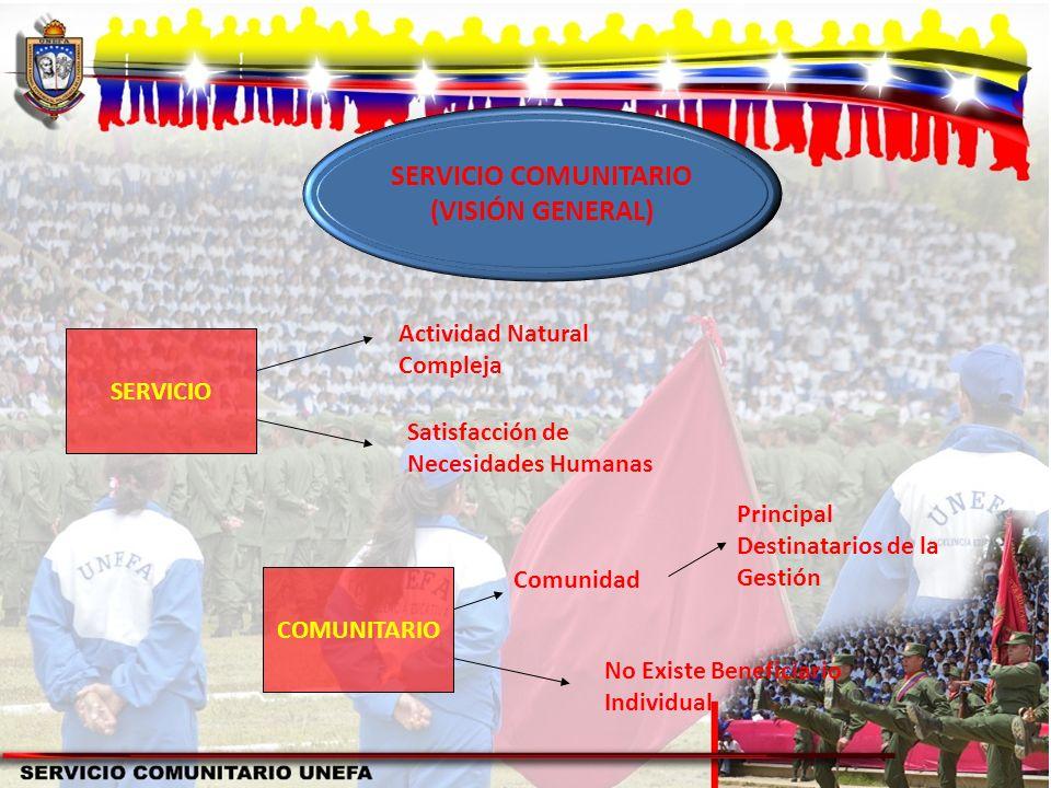 SERVICIO COMUNITARIO (VISIÓN GENERAL)