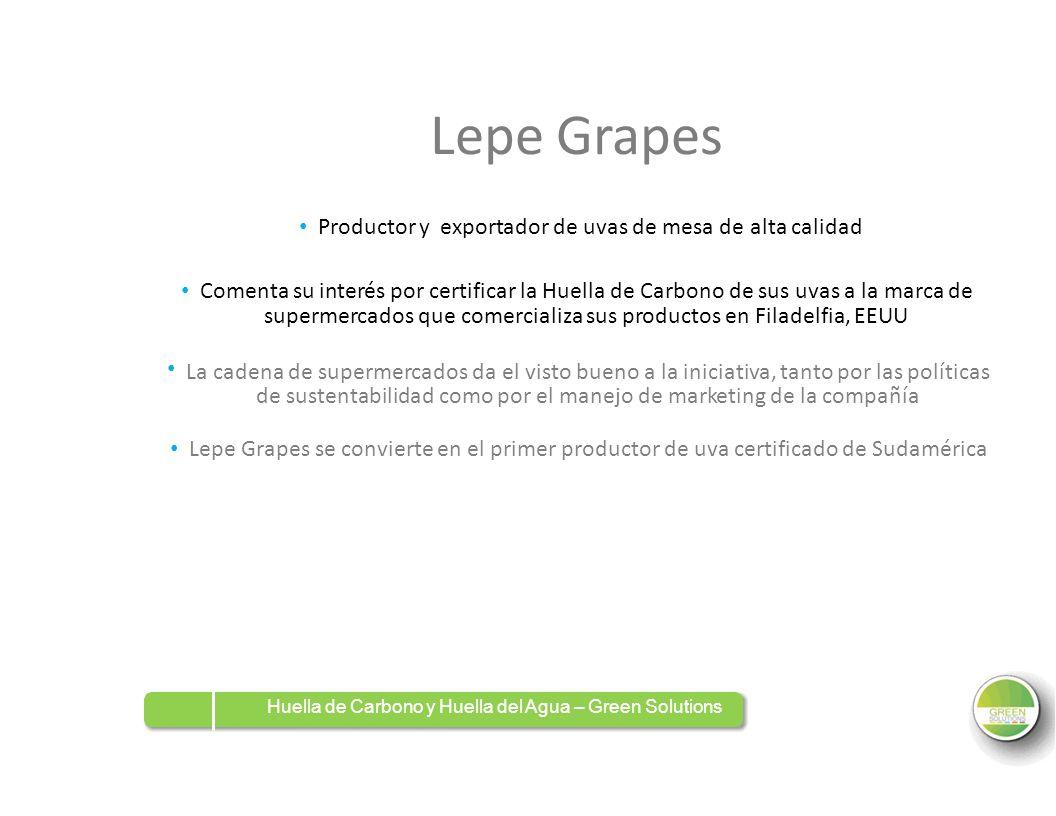 • Productor y exportador de uvas de mesa de alta calidad