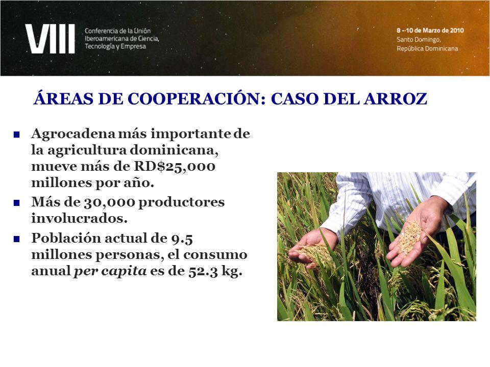 ÁREAS DE COOPERACIÓN: CASO DEL ARROZ