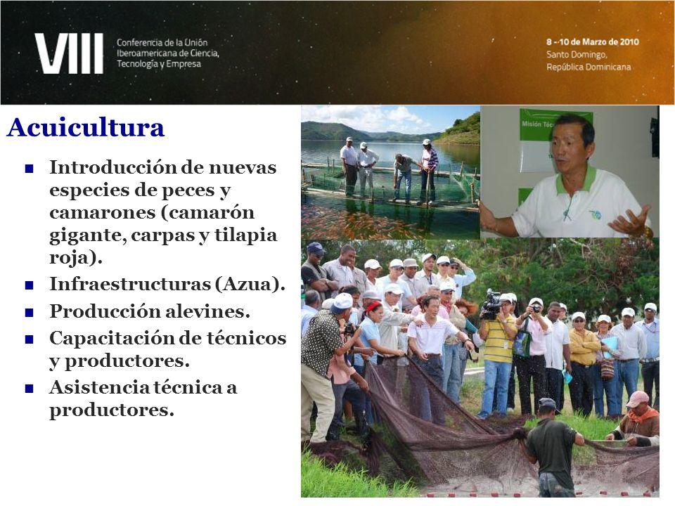 Acuicultura Introducción de nuevas especies de peces y camarones (camarón gigante, carpas y tilapia roja).